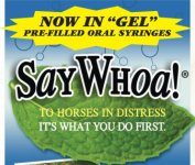 "SayWhoa! ""GEL"" Paste Pre-Filled Syringes"